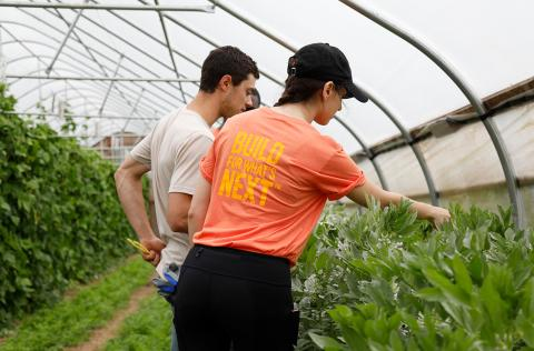 Woman working in a greenhouse during a Farm-to-Business impact sprint available through Johns Hopkins Carey Business School